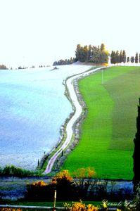 Lajatico - Pisa - campagna toscana