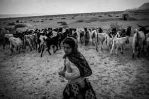 Shepherd girl _Gerash 2015