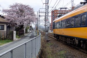 Train, Ise