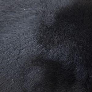 Asiatic black bear © Yusuke Sakai