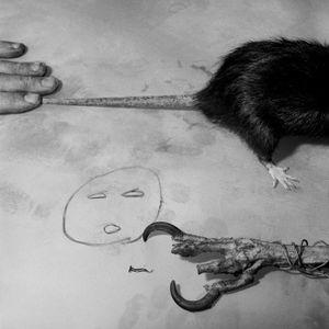 Predators, 2007 © Roger Ballen