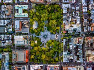 NYC 24 Washington Square Park