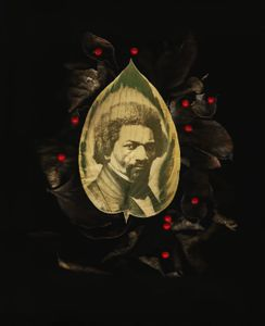Frederick Douglass, escaped slave, author, abolitionist, statesman,1818-1895. Portrait in hosta leaf with dried leaves and fresh berries.
