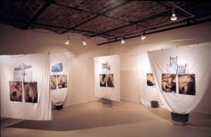 Installation view                                  Gallery Henoch  NY, NY                             © Diane Fenster