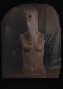 © Zelko Nedic, Torso With Grapes   5x7 Tintype, Hand Coloured