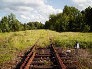 Train track near the Sobibór extermination camp site.