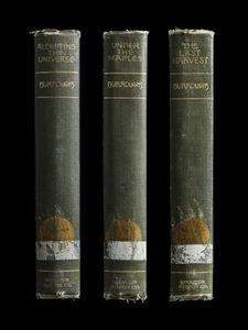 Multiple Spines, John Burroughs Set (Accepting the Universe, Under the Maples, The Last Harvest) © Kerry Mansfield
