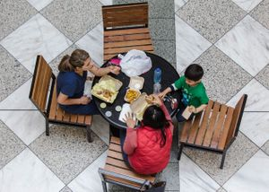 Looking Down at Mall while Family Eats Lunch