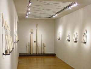 """Trees and Seedlings"" Installation View"