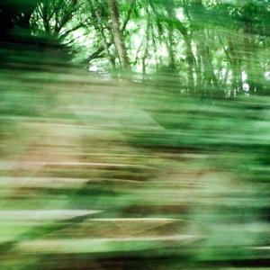 Cornish Roads (hedges), in Flow - B3315-1