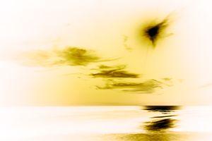 Sun Series III Malibu - Inverse