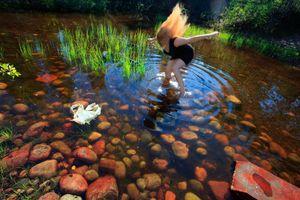 Swan Lake, 2011 © Anni Kinnunen