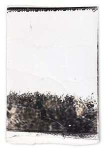 Paysage, 2002, Mixed Media on Silver Gelatin Print,186 x 127 cm © Jeff Cowen