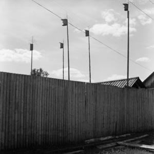 Nelmach. Tomsk region. Russia. 2008.