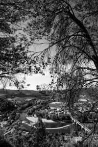 View from the Mediterranean Garden