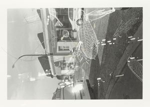 """""""Traceryscape - NZ215"""", painting on gelatin-silver print, 62x88cm, from the series Traceryscape © Aki Lumi"""