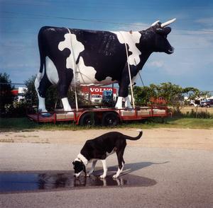 South of Osh Kosh, WI. 2003.