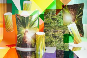 Tropics, 2014. Archival pigment print, 24 x 36 inches
