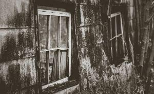 the Broken Windows