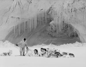 Hunter Mikide Kristiansen fixing his dogs on the ice in Thule (Inglefield fjord). © Ragnar Axelsson