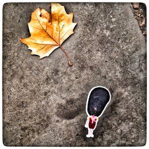 Leaf Me Alone...