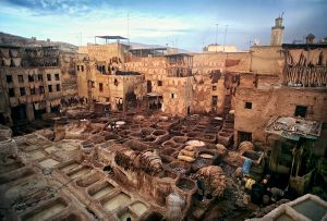 Fes, Morocco: Moroccan leather was famous around the world already in the middle ages. The way they work in the tanneries in the old part of the city has not changed over the centuries. © Matjaz Krivic