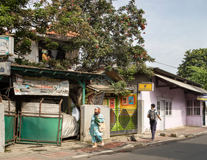 Tree House #1