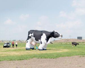 Dairy Campus (Public Open Day)
