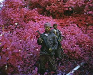 Man-Size, North Kivu, eastern Congo, 2011 © Richard Mosse. Courtesy of the artist and Jack Shainman Gallery.