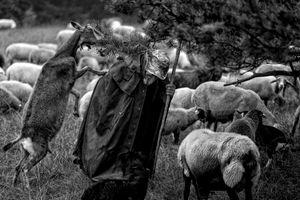 Shepherd Kurt Hartmann