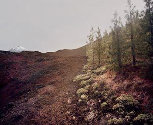 El Teide, view #01 © Meike Nixdorf