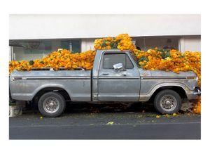 Cempasúchil truck, Monterrey Mexico