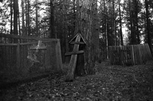 The village cemetery. Aypolovo. Tomsk region. Russia. 2009.