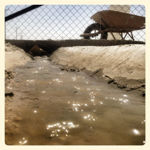 Close up of water in Za'atari refugee camp