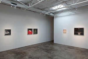 Better then Most, Talley Dunn Gallery, Dallas TX.