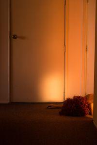 The Door (Self-Portrait)