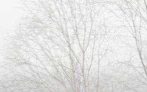 Untitled_Norvegia© Luca Lupi