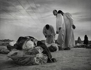 Near Hilla, Iraq (2003). A history of violence. The Mahawil mass grave.