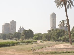Quiet Isolation | Intraurban | Cairo | No. 1