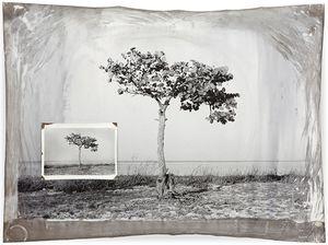 Cuba 4, 94 x 127 cm, Silver Print, 2005 © Jeff Cowen