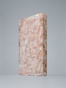 Lapis sarcophagus - Pollachius virens n°2