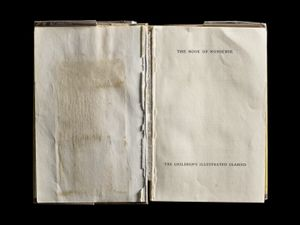 The Book of Nonsense, Interior Front Spread © Kerry Mansfield