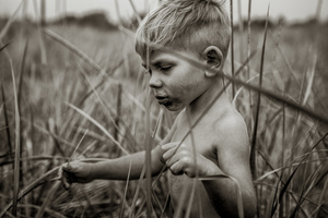 Lost in the Dune Grass