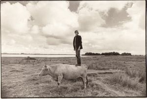 "Alan's Cow. From the exhibition ""Landscapes"" © Tom Wood"