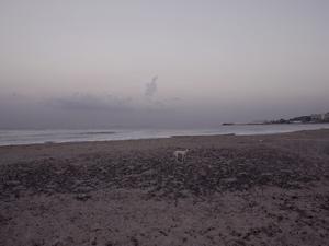 Beirut, 26th September 2011, 06:28
