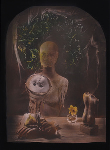 © Zelko Nedic, Things Of Desire     5x7 Tintype, Hand Coloured