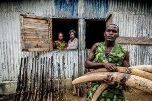 Inside Wildlife Crime © James Morgan