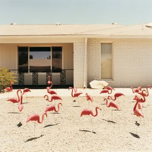 Front yard 3, from the series Sun City © Peter Granser