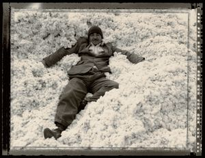 © Radek Skrivanek, Man in a pile of cotton, Kazakhstan
