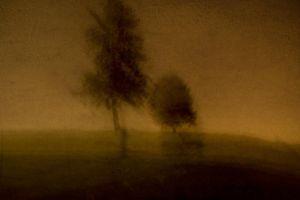 Night Park - 5 © Susan Bein